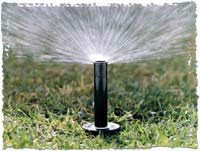 Lawn Sprinkler Installation